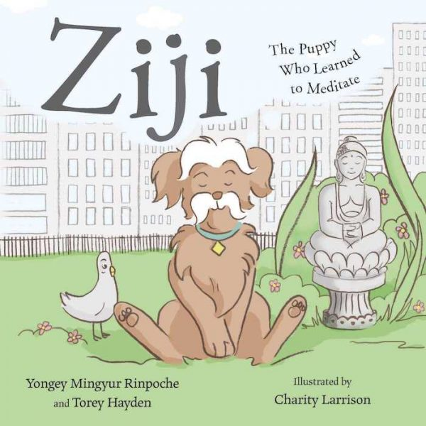 Ziji | The Puppy Who Learned to Meditate